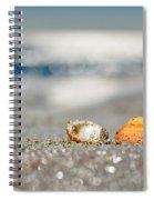 Beach Lovers Spiral Notebook