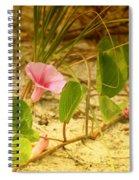 Beach Morning Glory Spiral Notebook
