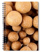 Beach Mushrooms Spiral Notebook