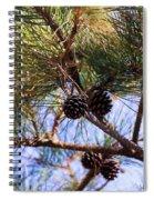 Beach Pine Spiral Notebook