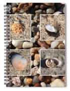 Beach Shells And Rocks Collage Spiral Notebook