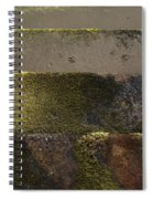 Beach Steps 1 Spiral Notebook