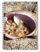 Beach Treasure Spiral Notebook