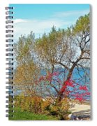 Beach Tree Spiral Notebook