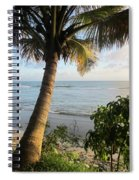 Beach Under The Palm 4 Spiral Notebook