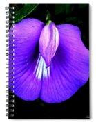 Beach Wildflower  Spiral Notebook