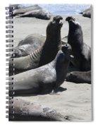 Beachmasters - Elephant Seals Spiral Notebook