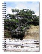 Beachtree Spiral Notebook