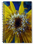Beaded Flower Spiral Notebook