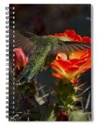 Beak Deep In Nectar  Spiral Notebook