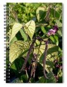 Bean And Beauty Spiral Notebook