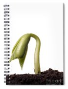 Bean Seedling Emerging From Soil Spiral Notebook