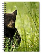 Bear Cub In Clover Spiral Notebook