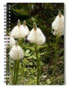 Bear Grass Spiral Notebook
