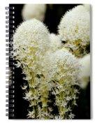 Bear Grass Flowers Glacier National Park Spiral Notebook