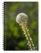Bear Grass Glow Spiral Notebook
