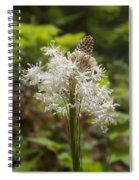 Bear Grass No 2 Spiral Notebook