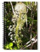 Bear Grass No 3 Spiral Notebook