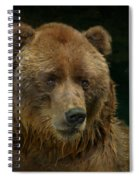 Bear In The Pool Spiral Notebook