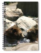 Bear Smooches Spiral Notebook
