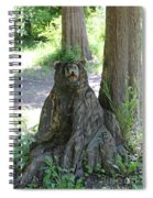 Bear In A Tree Spiral Notebook