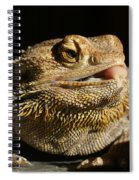 Bearded Dragon Spiral Notebook
