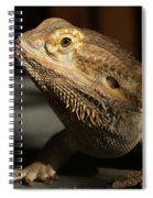 Bearded Dragon Profile Spiral Notebook