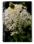 Beargrass Bloom Spiral Notebook