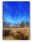 Beatific Day... Spiral Notebook