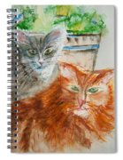 Beauregard And Stonewall Spiral Notebook