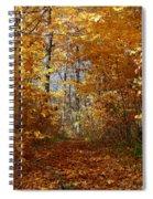 Beautiful Autumn Sanctuary Spiral Notebook