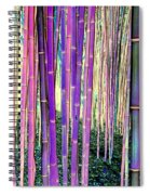 Beautiful Bamboo Spiral Notebook