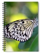 Beautiful Black N White Rice Paper Butterfly Spiral Notebook