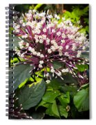 Beautiful Bloom Spiral Notebook