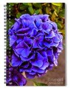 Beautiful Blue Hydrangea Spiral Notebook