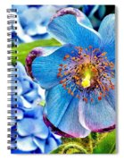 Beautiful Blue Orchid Spiral Notebook