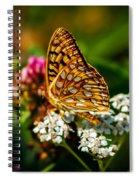 Beautiful Butterfly Spiral Notebook