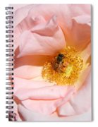 Beautiful By Nature Spiral Notebook