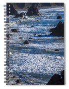 Beautiful California Coast Spiral Notebook