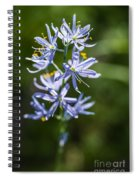 Beautiful Camas Lily In Idaho Spiral Notebook