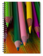Beautiful Colored Pencils Spiral Notebook