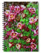 Beautiful Columbine   Spiral Notebook