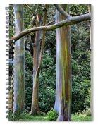 Beautiful Eucalyptus Spiral Notebook