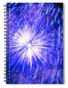 Beautiful Fireworks 11 Spiral Notebook