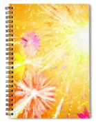 Beautiful Fireworks Spiral Notebook