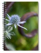 Beautiful Flower Buds Spiral Notebook