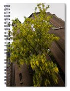 Beautiful Golden Chain Tree In Full Bloom Spiral Notebook
