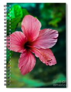 Beautiful Hibiscus Spiral Notebook