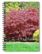 Beautiful Japanese Maple Spiral Notebook