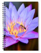 Beautiful Lily And Visiting Bee Spiral Notebook